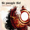 the Pineapple Thief - Tightly  Untold